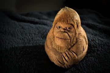 monkey-166271_1920